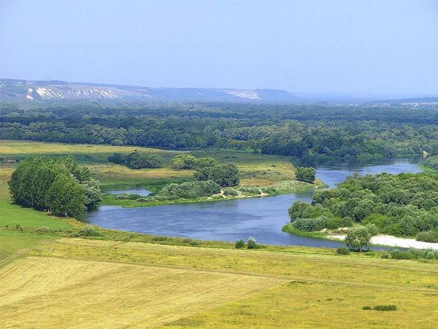 На имя Президента появилась петиция против строительства Багаевского гидроузла на Дону