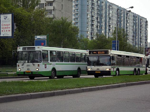 В Ростовской области резко увеличилось количество ДТП по вине водителей автобусов