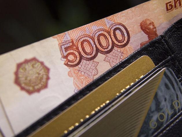 Ростовские предприниматели стали чаще пользоваться электронными микрозаймами