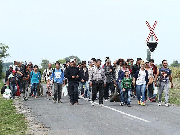 8,5 миллионов украинцев пересекли Ростовскую область в 2015 году
