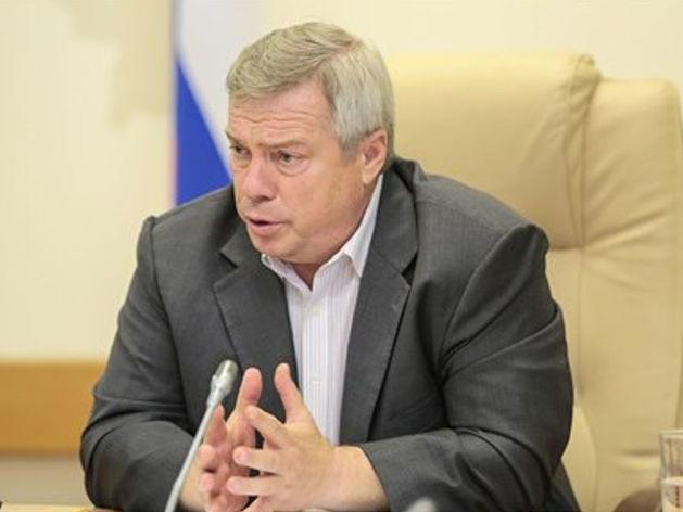 Глава донского региона: «Строительство тепличного комплекса начнется с 1 августа»
