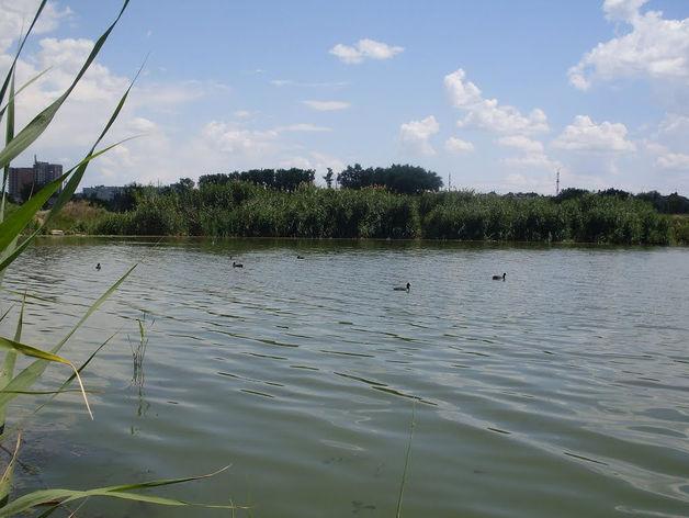 Директор реки: у Темерника может появиться хозяин