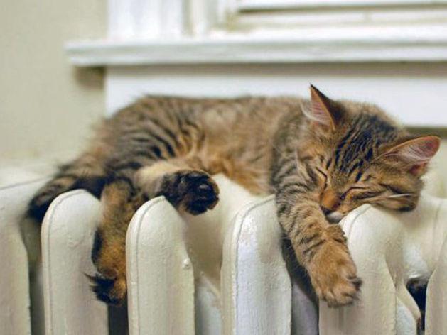 Отопление в дома Ростова начнут давать уже в пятницу