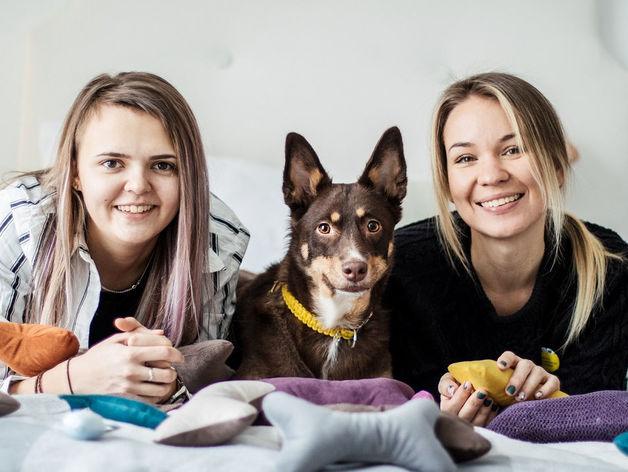 «Такого в Ростове еще не было»: стартаперы создали dog-пространство для владельцев собак