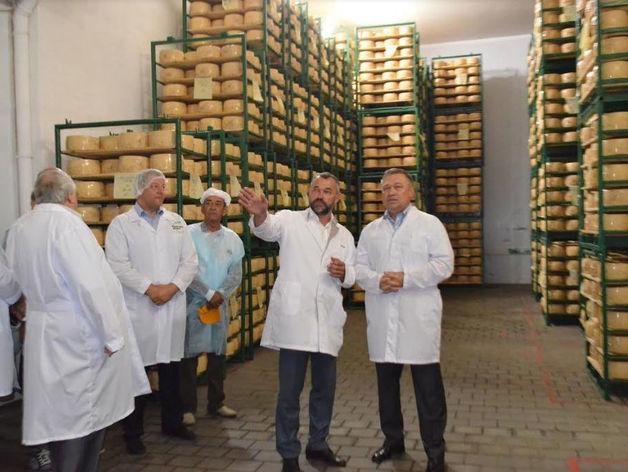 Сыродельный завод «Семикаракорский» модернизировал производство за 500 млн рублей